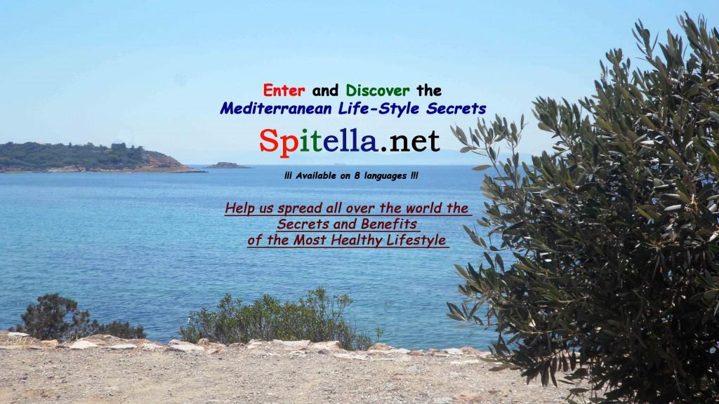 Spitella Cover Fcb English_01